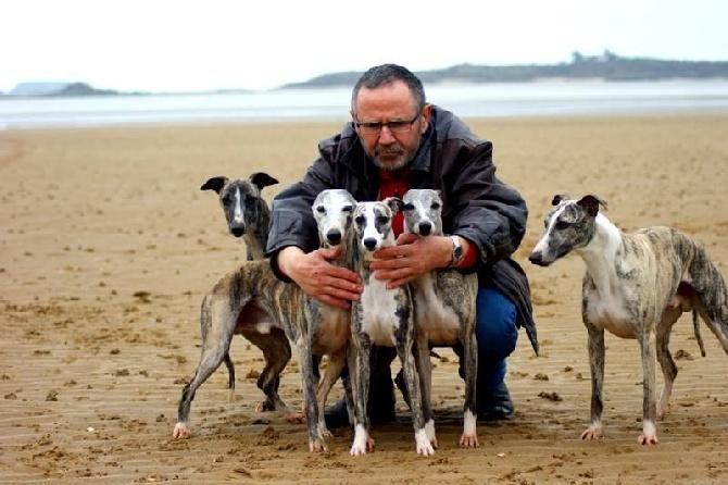 Site de rencontre avec chiens